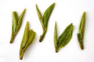 brewed tea leaves of longjing tea