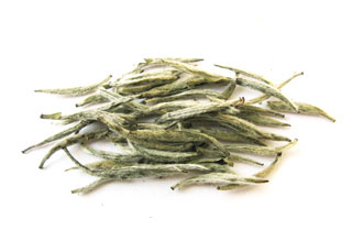 Wholesale silver needle white tea