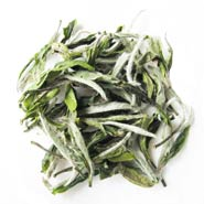White Peony Tea Wholesale