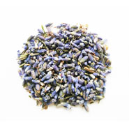 Lavender herbal tea wholesale