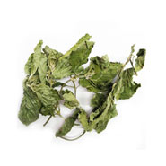 peppermint leaf herbal tea wholesale