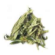 sweet stevia herbal tea wholesale