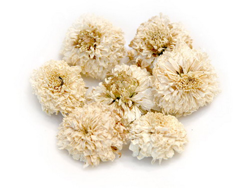 chrysanthemum-tea.png