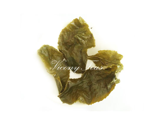 Huang Jin Gui Oolong | Golden Osmanthus  Brewed