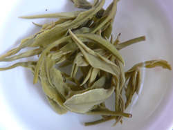 brewed tea leaves of huo qing tea